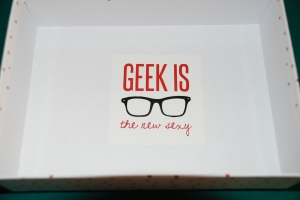 My Little Geekette Box